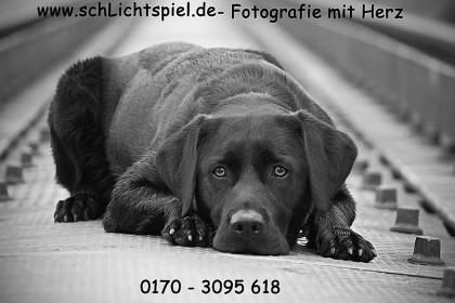 cache_2420943163